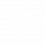 ecollective sustainable consultancy logo